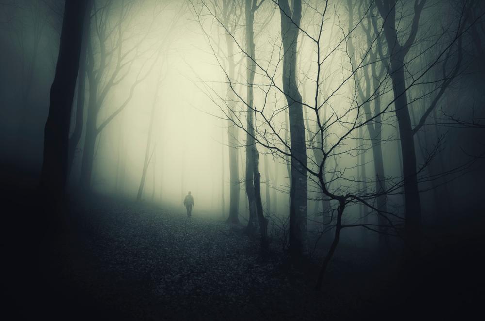 figure in misty woods
